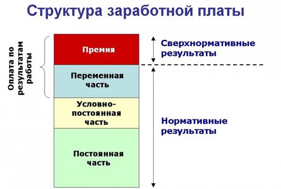 struktura2.jpg